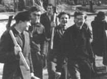 Statybos fakulteto pirmakursiai griuvėsių valymo talkoje, 1949 m. (Nuotr. iš B. Januševičiaus asmeninio archyvo)